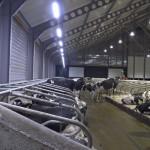 Uni-Light marknadsför unika LED-lampor i Europa